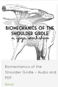 Biomechanics of the Shoulder Girdle Yoga